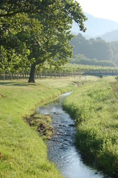"""Rural Properties – A Sustainable Life """"Off the Grid""""  Creek pictured looks similar to the one that traverses the property.."""