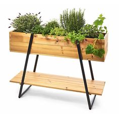 Frame made of thermotreated wood (pine). Trellis and legs are made of varnished steel. The steel braiding. Balcony Garden, Indoor Garden, Outdoor Gardens, Plant Box, Wood Plant Stand, Small Room Interior, Elevated Garden Beds, Coffee Room, Apartment Balcony Decorating