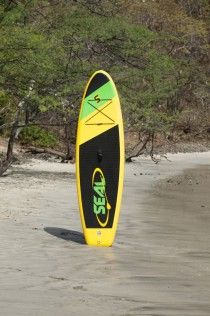 PUP Paddle Board: *Length – 9' *Width – 31'' *Thickness – 6'' (yellow green and black) At 9' long and 6'' thick this is the optimal board for lighter weight riders. The fully rounded nose and flat tail of this 31'' wide board allows it to be extremely maneuverable without compromising stability. Kit includes an adjustable length aluminum paddle, a high pressure hand pump, repair kit, and a backpack carry bag.