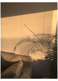 Light brown aesthetic wallpaper iphone ideas for 2019 Brown Aesthetic, Aesthetic Rooms, Aesthetic Photo, Aesthetic Pictures, Sun Aesthetic, Aesthetic Vintage, Golden Hour, Wall Collage, Aesthetic Wallpapers