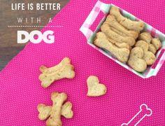 Biscoito bom pra cachorro