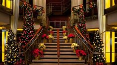 Specials, Celebrity Cruises, Christmas at Sea. Don't you want to go...