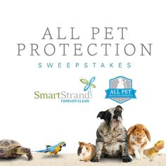 We just launched our #AllPetCarpet Sweepstakes.  Enter to win one of two all new SmartStrand Forever Clean cut and bound rugs with All Pet Protection and Warranty. There will be two winners so enter now by clicking on the link in the profile! #LoveYourPet #Pets