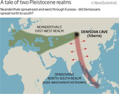 A tale of two Pleistocene realms: Neanderthals spread east and west through Eurasia - did Denisovans spread north to south? Art Rupestre, France Culture, Dna Genealogy, New Scientist, Early Humans, Human Evolution, Mystery Of History, Einstein, World History
