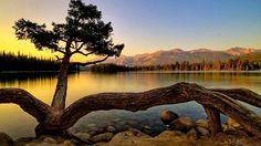 Daniel Sierra: Nature Hd Nature Wallpapers for Desktop Background Beautiful Sunset, Beautiful World, Beautiful Places, Beautiful Pictures, Beautiful Scenery, Natural Scenery, Simply Beautiful, Hd Nature Wallpapers, Hd Backgrounds
