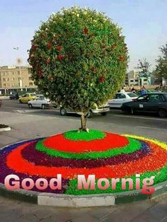 Good Morning Life Quotes, Morning Qoutes, Good Morning Roses, Good Morning Inspirational Quotes, Morning Love, Morning Greetings Quotes, Good Morning Coffee, Good Morning Good Night, Morning Board