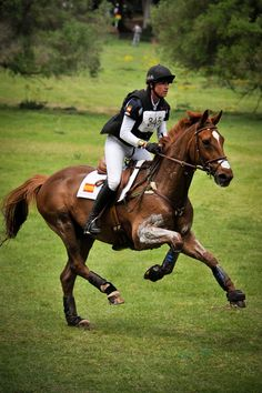 Cannot wait for the season to start....let freedom ring is what I feel like when I get to let my horse rock 'n' roll on XC!!!