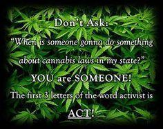 LETS GET OUT AND VOTE IN NOVEMBER!!  Cannabis Reform. #medicalmarijuanaexchange #marijuana #cannabis #reform #VOTE