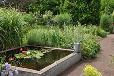 Three Dogs in a Garden: Pin Ideas: Small Water Features & Garden Ponds Small Water Gardens, Fish Pond Gardens, Container Water Gardens, Indoor Water Garden, Garden Ponds, Small Backyard Ponds, Backyard Water Feature, Backyard Ideas, Small Water Features