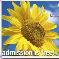Sun & Garden Show on WordPress.com.