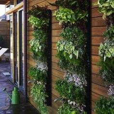 Small Spaces Permaculture – Vertical gardening for small spaces