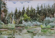 Watercolor. Forest lake