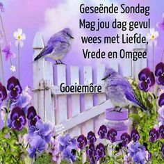 Good Morning Wishes, Day Wishes, Lekker Dag, Goeie Nag, Goeie More, Afrikaans Quotes, Prayer Board, Special Quotes, Morning Greeting