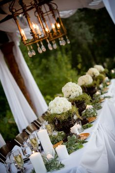 white curtains + classy lantern + urns + moss + bridesmaids white rose bouquets..