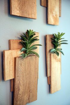 A green take on wall decor uses raw wood planks as planters for succulents, as seen on HGTV's Fixer Upper.