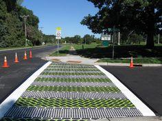 Fun Green And White Crosswalk In Minesota