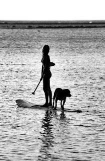 #supgogs, #oceansupyoga, #paddledog