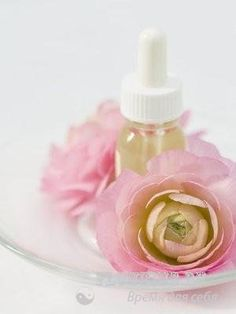 Аромат красивой кожи: эфирные масла для омоложения - http://vipmodnica.ru/aromat-krasivoj-kozhi-efirnye-masla-dlya-omolozheniya/