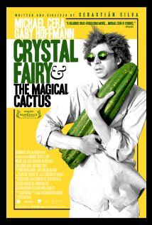 Crystal Fairy and The Magical Cactus (2013) As Jamie travels in Chile, he invites an eccentric woman to join his group's quest to score a fabled hallucinogen, a move that finds him at odds with his new companion, until they drink the magic brew on a beach at the edge of the desert.  http://www.imdb.com/title/tt2332579/?ref_=fn_al_tt_1