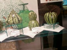 Melons, all shapes and sizes