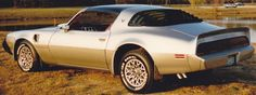 My Beloved 1979 Pontiac Trans Am 6.6 L T/A with the Shaker Hood