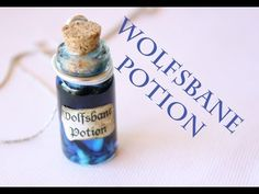 Potions, Drinks, & Spells from Harry Potter Bottle Jewelry, Bottle Charms, Bottle Necklace, Clay Charms, Mini Bottles, Bottles And Jars, Glass Bottles, Potion Harry Potter, Harry Potter Diy