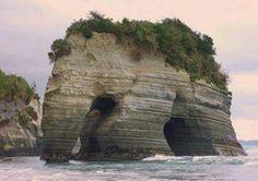 Elephant rock, New Zeland