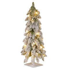 National Tree Company Snowy Downswept 24 in. Artificial Forestree with Metal Plate and 50 Clear Lights-FTDF1-24ALO-1 - The Home Depot