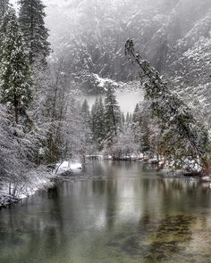 ✮ Merced river in Yosemite National Park