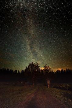 A summer evening under the stars.