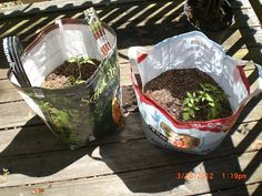 Upcycle Feed Bag into Plant Grow Bag w/ handles <<use this concept to make own DIY Grow Bags - try making w/ potting soil bag>> Feed Bag Tote, Feed Sack Bags, Diy Grow Bags, Farm Hacks, Plant Bags, Garden Bags, Recycled Plastic Bags, Recyle, Homestead Gardens