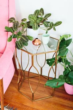 Glass side table, greens and pink sofa