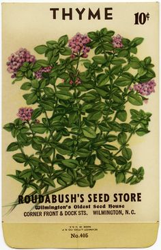 it's THYME  to celebrate!  http://olddesignshop.com/wp-content/uploads/2013/06/OldDesignShop_SeedPacketThyme.jpg