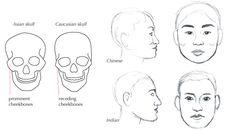 Human Anatomy Fundamentals: Advanced Facial Features - Tuts+ Design & Illustration Tutorial