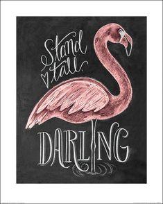Flamingo : achetez le Poster roulé Flamingo - Affiches & posters