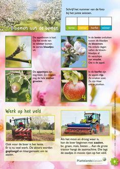 Wat doen de planten in de lente?2 @keireeen School Info, Kids Gifts, Creative, Projects, Inspiration, Discovery, Georgia, Crowns, Biology