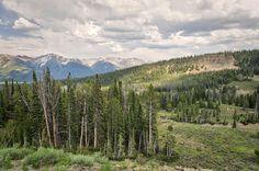 Landscape Photography  Sun Valley Summer Sun Valley /