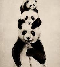 pandas - Buscar con Google