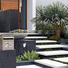 backyard design – Gardening Tips Residential Landscaping, Modern Landscaping, Front Yard Landscaping, Modern Landscape Design, Landscape Plans, Yard Design, House Design, Garden Steps, House Entrance