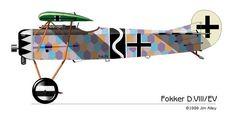 Fokker E.V / D.Vlll of  Erich Lion hardt Polen.