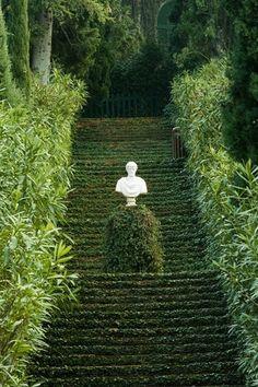 Garden steps #garden