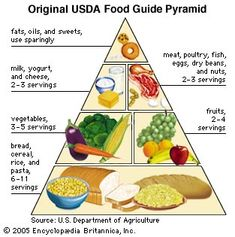 99 Best Food Pyramid images in 2019 | Food pyramid, Healthy
