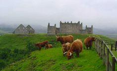 Ruthven Barracks  https://www.historicenvironment.scot/visit-a-place/places/ruthven-barracks/