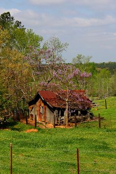 old pictures of randolph county, alabama | barns of randolph county