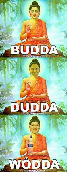 Budda and his crew. Funny Memes Images, Funny Posts, Polish Memes, Dark Jokes, Really Funny Pictures, Rawr Xd, Wtf Moments, Wtf Funny, Man Humor