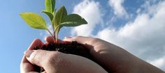 Piden a diputados legislar en pro del desarrollo sustentable