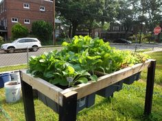 Self-Watering Veggie Table : 15 Steps (with Pictures) - Instructables Metal Garden Beds, Elevated Garden Beds, Cedar Raised Garden Beds, Raised Vegetable Gardens, Concrete Garden, Vegetable Gardening, Raised Gardens, Veggie Gardens, Raised Bed