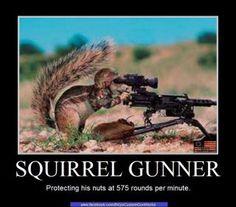 http://www.digitalcrack.org/wordpress/wp-content/uploads/2012/03/squirrel-mg.jpg