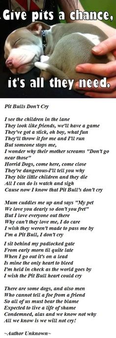 Pit Bulls Don't Cry Poem :'(