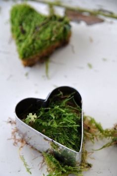 Moss hearts , eco nature craft for use at a wedding Natural Christmas, Green Christmas, Winter Christmas, Christmas Time, Christmas Crafts, Christmas Decorations, Xmas, Garden Crafts, Home Crafts